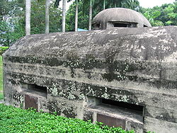 Pasir Panjang Machine-Gun Pillbox 8, Nov 06.JPG