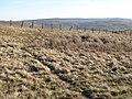 Path below Greenmere Head - geograph.org.uk - 703191.jpg