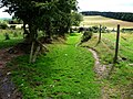 Path from Cranberry Rock - geograph.org.uk - 1592998.jpg