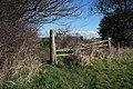 Path leading to Poplar Farm (geograph 4399041).jpg