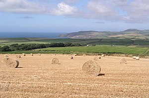 Pembrokeshire Fields - geograph.org.uk - 240365.jpg