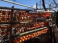 Persimmon drying in Fujinomiya,Shizuoka,Japan(吊るし柿白糸の滝下流) DSCF0015.jpg