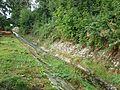 PeterswalderBach2.jpg