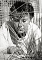 Photo portrait of Harper Lee (To Kill a Mockingbird dust jacket, 1960) (cropped).jpg
