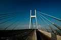 PhuMy bridge - Cầu Phú Mỹ2.jpg