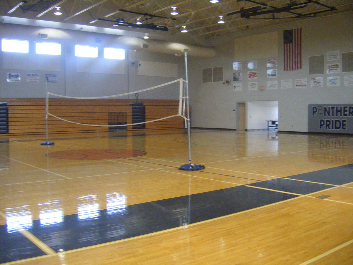 Image Result For Basketball Court Color