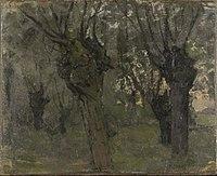 Piet Mondriaan - Willow grove with two prominent trees - 0334218 - Kunstmuseum Den Haag.jpg