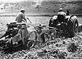 PikiWiki Israel 1211 Kibutz Gan-Shmuel ks9- 103 גן-שמואל-הוצאת תפוחי אדמה 1945-50.jpg