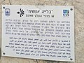PikiWiki Israel 52871 view in the galilee rock garden.jpg