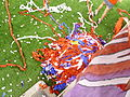 Pile of streamers thrown during a game versus Charleston Battery Charleston Battery.jpg