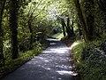Pilgrim's Way, Trottiscliffe - geograph.org.uk - 491354.jpg