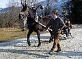 Pinzgauer Brauchtums- und Trachtenschlittenfest, 2. Februar 2014, 11.jpg