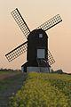 Pitstone Windmill.jpg