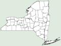 Plantago coronopus NY-dist-map.png