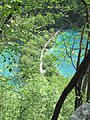 Plitvice Lakes National Park 13.JPG