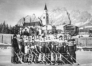 Ice hockey at the 1928 Winter Olympics - The Polish national team during the Olympics.
