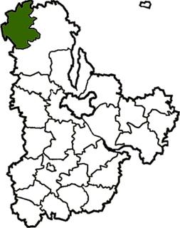 Poliske Raion Former subdivision of Kyiv Oblast, Ukraine