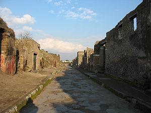 Conservation issues of Pompeii and Herculaneum - The buildings on the left show signs of decay due to the infestation of various plants, while the debris accumulating on the footpath indicates erosion of the infrastructure. The footpaths and road have also been worn down by pedestrian activity since excavation.