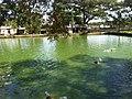 Pond in front of Shah Paran Dhargah(1).jpg