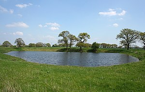 English: Pond north east of The Twemlows One o...