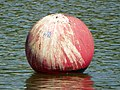 Project 365 Day 144 Buoy (5755853701).jpg