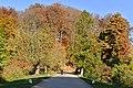 Promenade sous les milles couleurs de l'automne (22621544510).jpg