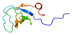 Protein ARHGEF6 PDB 1ujy.png