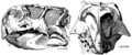 Psittacosaurus skull lateral.png