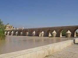 Roman bridge of Córdoba