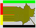 PunaVihrea-1.jpg
