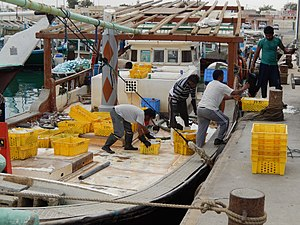 Economy of Qatar - Scene in the harbour of Al Khor. Fisheries is a minor sector in Qatar, and production is almost exclusively for domestic consumption.