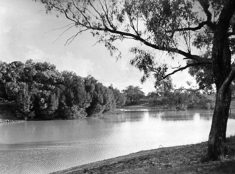 Thomson River (Queensland) - Longreach, 1938