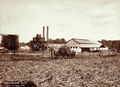 Queensland State Archives 2300 North Isis Sugar Mill with cart load of cane in foreground 16 September 1896.png