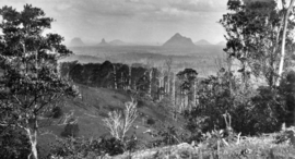 Queensland State Archives 362 Looking across Wootha towards the Glass House Mountains c 1931.png