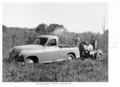 Queensland State Archives 4493 Groundsel poison spraying c 1950.png