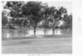 Queensland State Archives 5285 Bradleys Gully Charleville January 1955.png