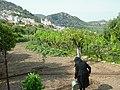 Régime crétois - panoramio.jpg
