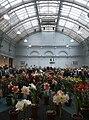 RHS Lindley Hall flower show 5072.JPG