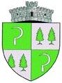 ROU SV Capu Campului CoA.png