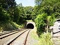 Railway tunnel near Furness Abbey - geograph.org.uk - 210566.jpg