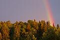 Rainbow (2571231582).jpg