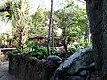 Rainforest Falls 3-Buffalo Zoo.JPG