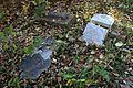 Raleigh Cemetery Memphis TN 2013-11-10 018.jpg