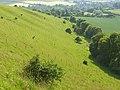 Ram's Cliff - geograph.org.uk - 846512.jpg
