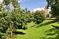 Rapperswil - Hirschpark - Schloss - Lindenhof 2011-06-19 15-12-04.JPG