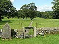 Rear gate of St Peter's Churchyard, Coniston Cold - geograph.org.uk - 1437097.jpg