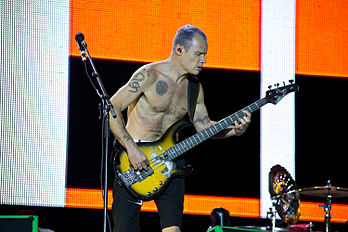 Michael Balzary, bassiste du groupe Red Hot Chili Peppers, au festival Rock in Rio à Madrid en 2012. (définition réelle 3 000 × 2 000)