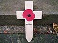 Remembrance Poppy (2008)-01.jpg