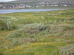 Vadsø - Image: Reste der Festung Vadso