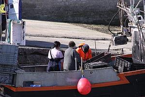 Retour de la pêche à la seiche du fileyeur Jason IV (15).JPG